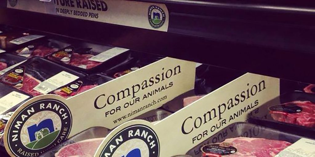 stanescu_open-letter-nov-2_compassion-lable_2