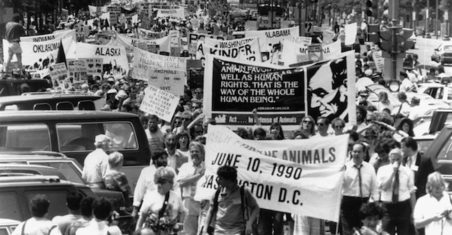 an analysis of regans the case for animal rights and singers animal liberation Get access to singer and cohen animal rights essays only case against animal rights publication of peter singers book animal liberation in 1975 is seen as a.